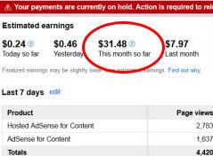 YouTube Partner Earnings